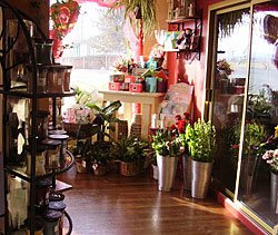A look inside our Yerington flower shop, Twigs.
