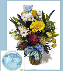 It's a Boy! from Twigs Flowers and Gifs in Yerington, NV