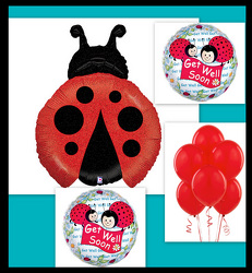 Ladybug Love from Twigs Flowers and Gifs in Yerington, NV