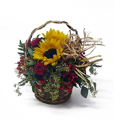 Country Sunshine from Twigs Flowers and Gifs in Yerington, NV
