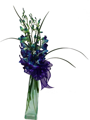 Make Mom Smile With A Breathtaking Vase Of Blue Orchids Available